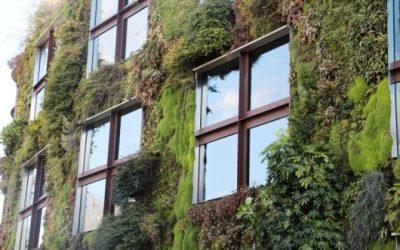 Filmpjes groene gezonde stad