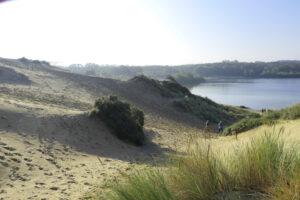 duin in Zuid-Kennemerland