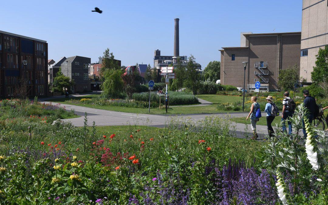 Gezond Natuur Wandelen in Leiden van start