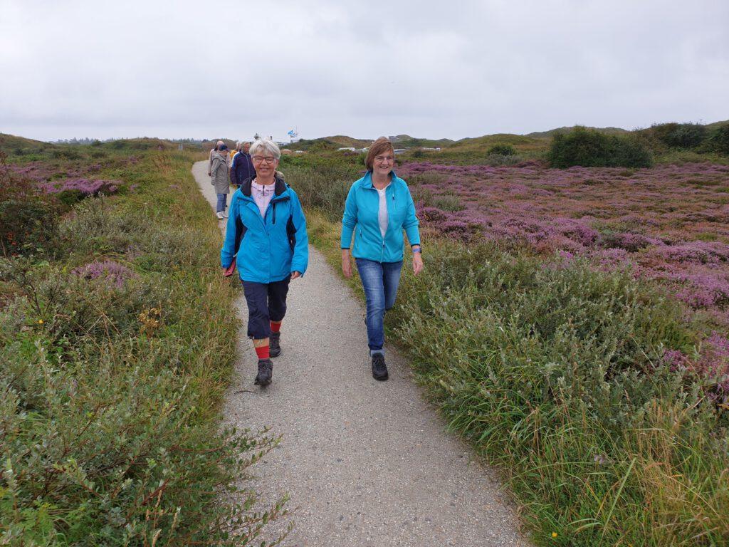 wandelaars tussen Texelse heide