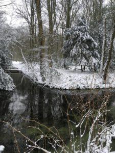 natuur in Leidse Hout