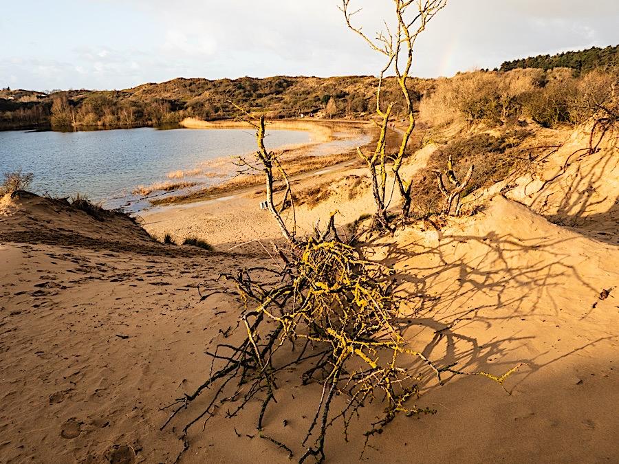 Nationaal Park Zuid-Kennemerland, zaterdag 18 januari