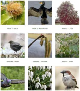 schermafbeelding website Natuurmomenten.info