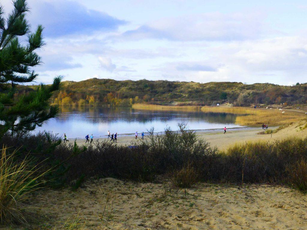 Het Wed, Nationaal Park Zuid-Kennemerland
