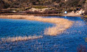 Het Wed in Nationaal Park Zuid-Kennemerland