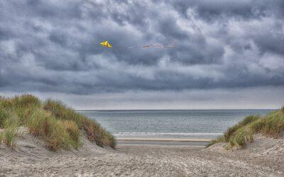 Nederlanders gelukkiger in duin, aan strand en op hei dan in park of agrarisch gebied