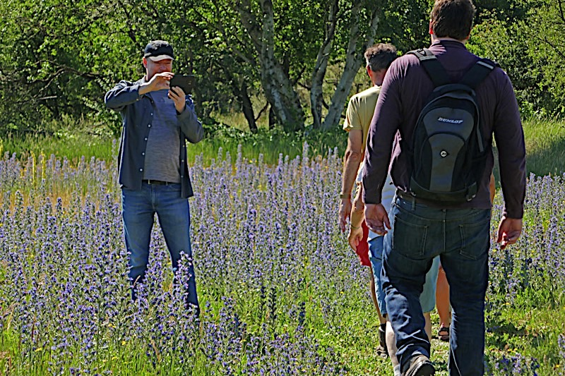 Zaterdag 29 juni, Nationaal Park Zuid-Kennemerland