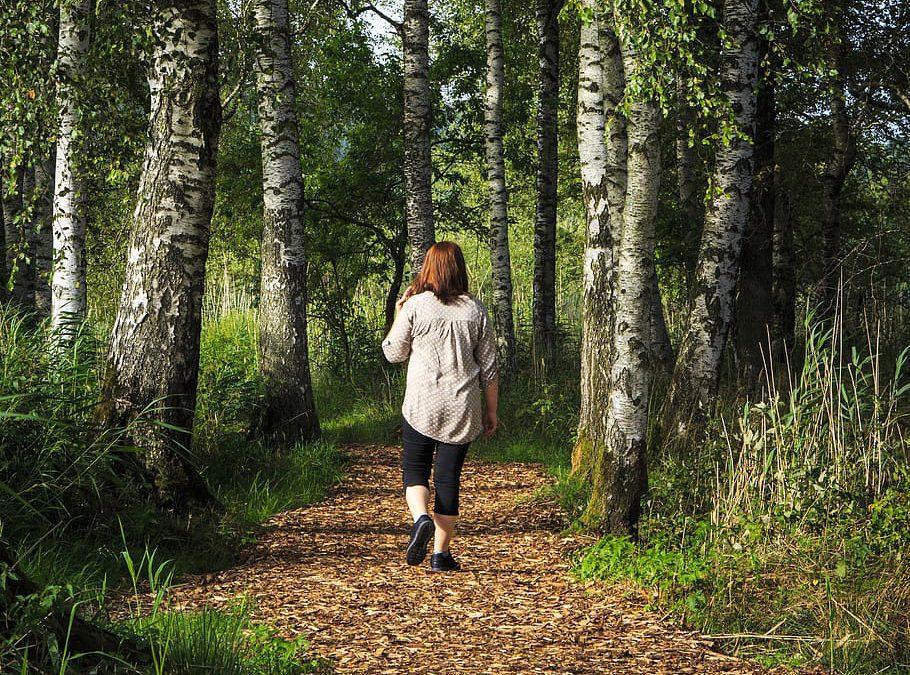 Nieuw wetenschappelijk onderzoek: van meer wandelen leef je langer