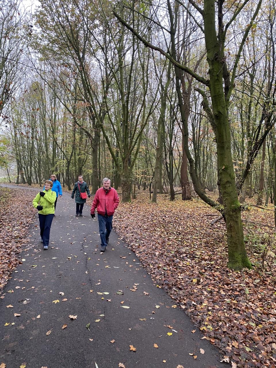 wandelaars in bos
