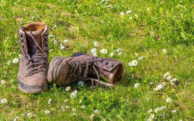 Merendeel van Nederlanders vindt dat arts natuur zou mogen voorschrijven
