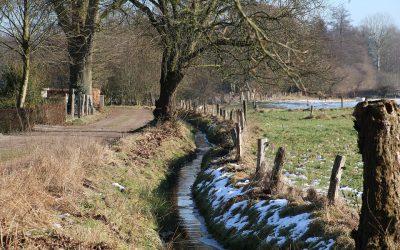 Gezondheidsonderzoek bewegen in het groen Vlaanderen